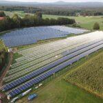 Bologna (WWF): PNRR sforzo lodevole del Governo ma serve una rivoluzione verde