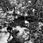 Salgado fotografa l'Amazzonia che rischia di scomparire